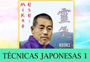 curso técnicas japonesas 1